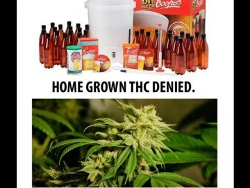 homebrew homegrown legal illegal