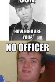 how high are you really high guy