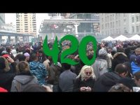 meaning of 420 cannabis marijuana pot culture