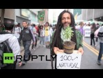 brazil marijuana legalization march