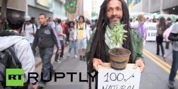 brazil marijuana legalization march