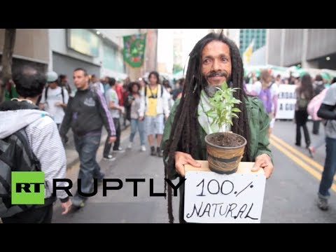 Brazil Holds huge pot legalization march