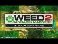 doctor sanjay gupta weed part 2 special