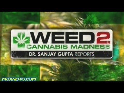 "Dr Sanjay Gupta's ""WEED 2"" Documentary (2014)"