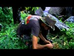 Strain Hunters Malawi Expedition franco