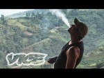 Kings of Cannabis documentary columbia