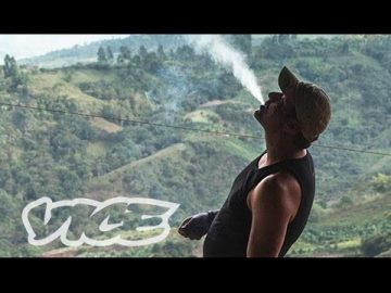 Kings of Cannabis documentary columbia