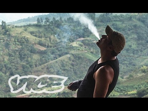 Kings of Cannabis – Vice Documentary