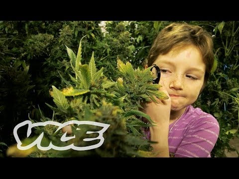 Children using medical cannabis / marijuana to stay alive