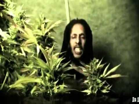 Julian Marley – Boom Draw