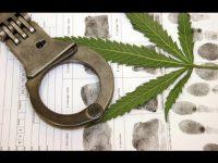 marijuana life sentence