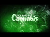 documentary about cannabis