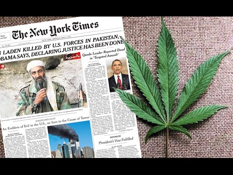 Hypocrites? New York Times Support Marijuana But Drug Test