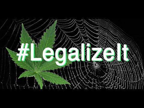 The Bill To Legalize Weed – Federally! ( Charlotte's Web Medical Hemp Act)