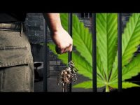 Overturning Pot Convictions In Colorado
