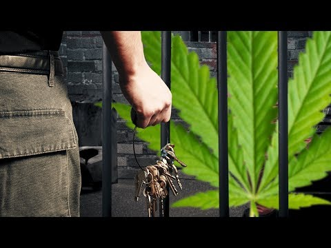 Overturning Pot Convictions In Colorado – A Step Closer To Sanity