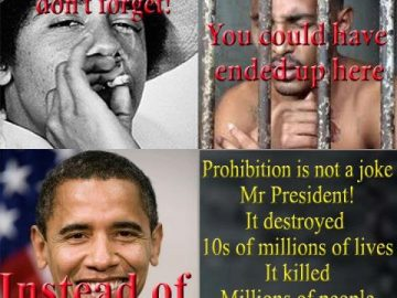 v drugs laws barrack obama meme