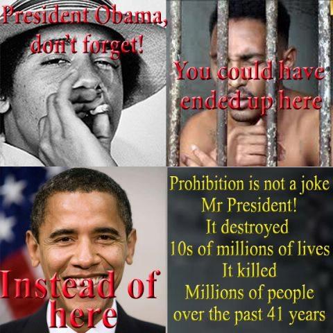 v drugs laws barrack obama meme