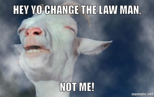 stoned goat weed law meme
