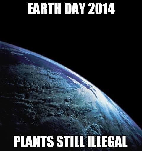 cannabis illegal plants earth day