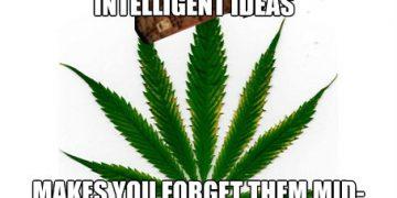 scumbag marijuana meme