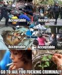 police oppression meme