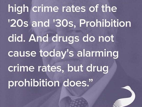 Judge James C. Paine Prohibition Quote