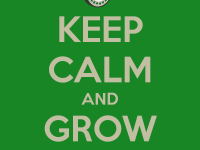 keep calm and grow pot