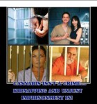 Cannabis Is Not A Crime kidnapping
