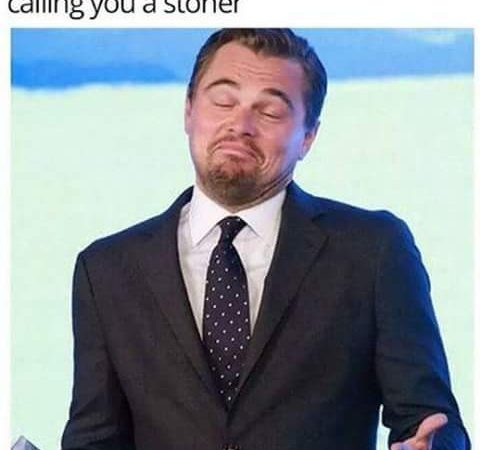 Trying to insult a stoner