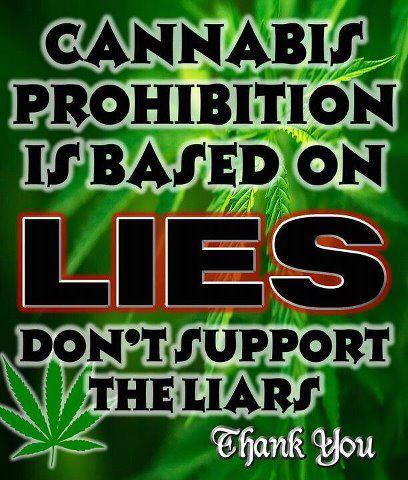 marijuana prohibition lies meme