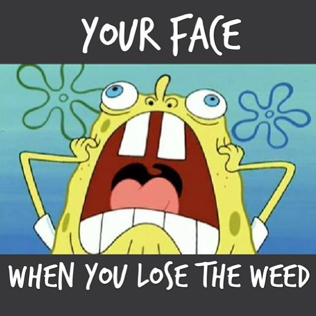 Your Face When You've Lost Weed