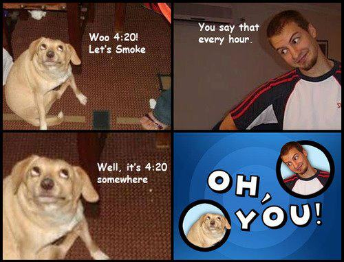 "420 dog – ""It's 4.20 somewhere"""