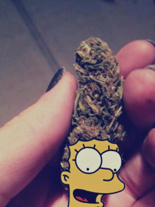 marge simpson funny weed hair
