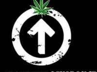 cannabis Above The Ignorance