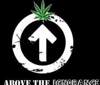 cannabis Above The Ignorance