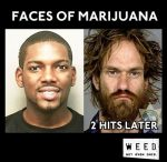 hits of marijuana before after