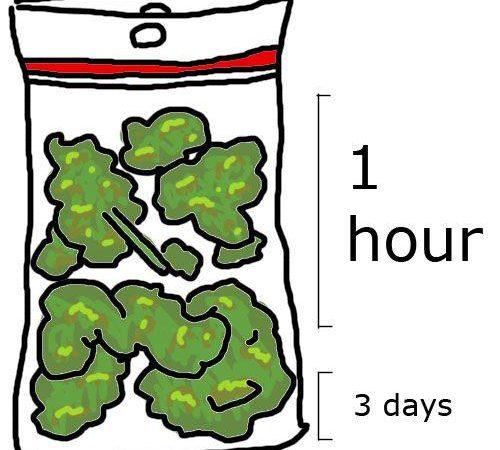 How Fast I Smoke My Bag Of Weed