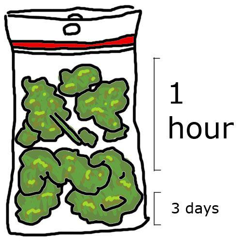 how fast smoke weed bag meme