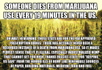 Marijuana Use Linked To One Death Every 19 Minutes in the US