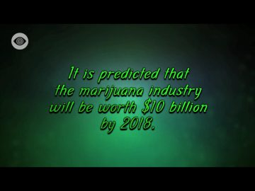 It's predicted that the marijuana industry will be worth $10 billion by 2018
