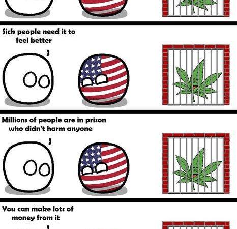 The Reality of Marijuana Legalization