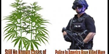 Cannabis is safer than the police