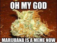 marijuana meme