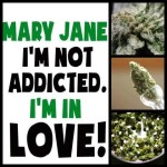 love maryjane addicted