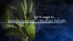 medicinal cannabis impact human health documentary