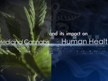 medicinal cannabis impact human health documentary