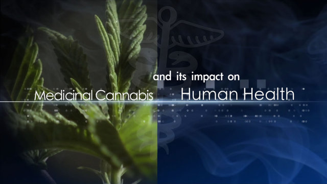 Medicinal Cannabis and Its Impact on Human Health Documentary (2011)