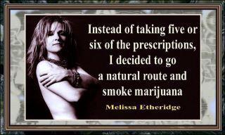 Melissa Etheridge marijuana quote
