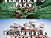 One medicine for ten problems marijuana meme